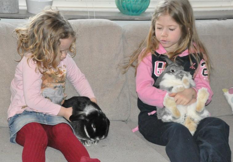 Magda Annie kaninerna