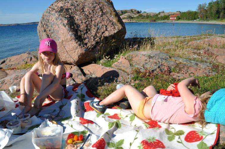 Veddö picknick