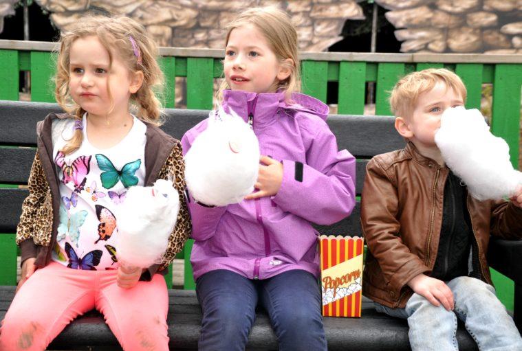 Eskilstuna parken zoo event