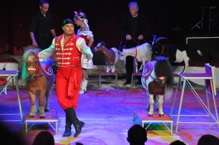 Circus Scott och Babblarna