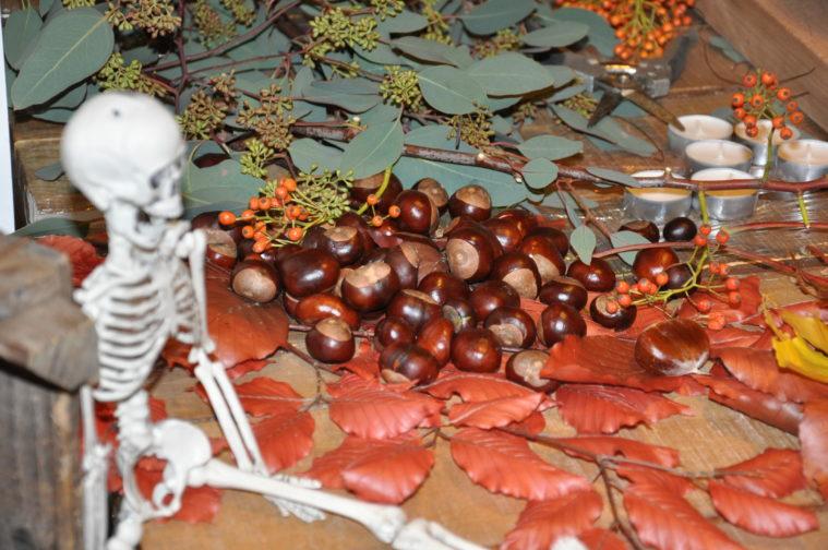 Sheraton pumpa halloween anitha Schulman