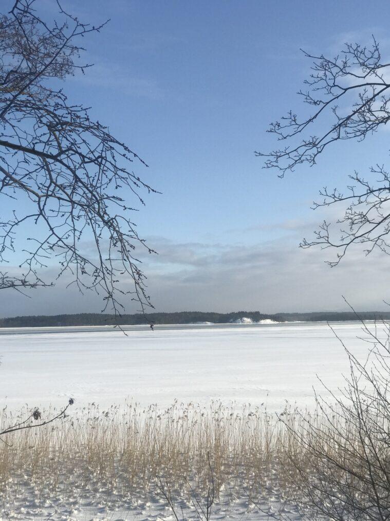 Natur vinter